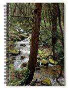 Evergreen Stream Ravine Spiral Notebook