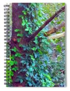 Evergreen Tree With Green Vine Spiral Notebook