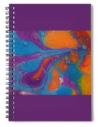 Everycolor 2 Spiral Notebook