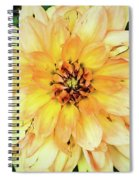 Everything Has Beauty Spiral Notebook