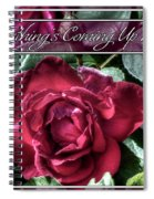 Everything's Coming Up Roses Spiral Notebook