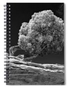 Evidence Of Weather Spiral Notebook