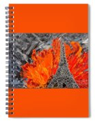 Exciting Spiral Notebook