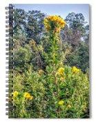 Exhortation Spiral Notebook