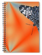 Exotic Abstract Spiral Notebook