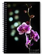 Exotic Orchid 2 Spiral Notebook