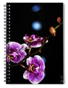 Exotic Orchid 6 Spiral Notebook