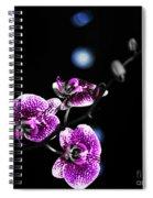 Exotic Orchid 6 V2 Spiral Notebook
