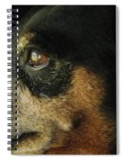 Experienced Guard Spiral Notebook