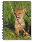 Exploring The Outside World Spiral Notebook