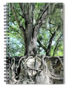 Exposed - Oak Roots Spiral Notebook