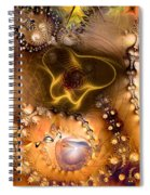 Exposition On The Expanded Universe Spiral Notebook