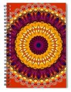 Expression No. 7 Mandala Spiral Notebook