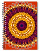 Expression No. 7 Mandala Spiral Notebook