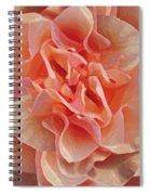 Expressionist Rose Spiral Notebook