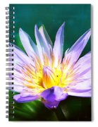 Exquisite Waterlily Spiral Notebook