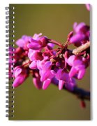 Extending Welcome Spiral Notebook