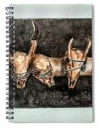 Extinction Spiral Notebook