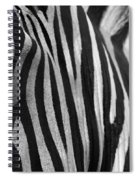 Extreme Close Up Of A Zebra Spiral Notebook