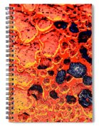 Extrinsic Spiral Notebook