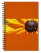 Eye Catcher Spiral Notebook