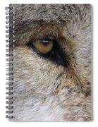 Eye Catcher Spiral Notebook