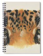 Jaguar Gaze Spiral Notebook