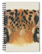 Jaguar Gaze Spiral Notebook