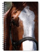 Eye Contact Spiral Notebook