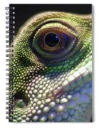 Eye Of Lizard Spiral Notebook