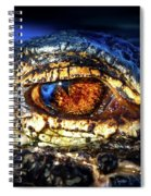 Eye Of The Apex Spiral Notebook