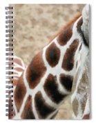 Eye Of The Giraffe. Spiral Notebook