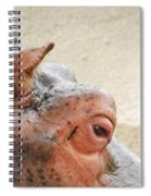 Eye Of The Hippo Spiral Notebook