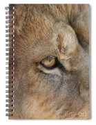 Eye Of The Lion #2 Spiral Notebook