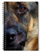 Eye Of The Shepherd Spiral Notebook