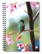 Eye On Spring Spiral Notebook