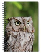 Eye On The Fly Spiral Notebook