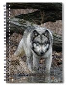 Eye On You Spiral Notebook