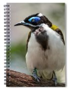 Eye See Blue Spiral Notebook