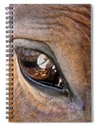 Eye See You Too Spiral Notebook