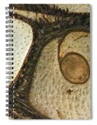 Eye Spy Spiral Notebook