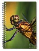 Eye To Eye Dragonfly Spiral Notebook