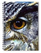 Eyes Of Owls No.25 Spiral Notebook