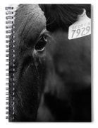 Eyes Of The Cow Spiral Notebook