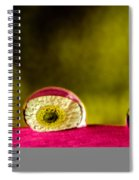 Eyes Of The Petal Spiral Notebook