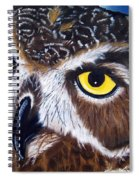 Eyes Of Wisdom Spiral Notebook