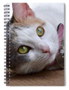 Eyes On The Prize Spiral Notebook
