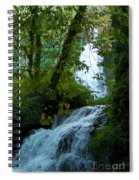 Eyes Over The Flowing Water Spiral Notebook