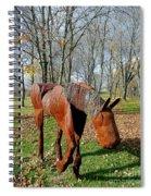 Fabulous Fillie Spiral Notebook