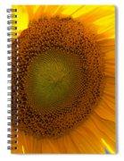 Fabulous Spiral Notebook